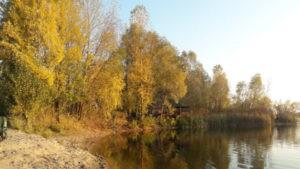 Осень на озере Мартышев