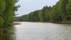 Обводной канал Днепра весной
