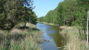 Лето на обводном канале