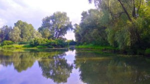 Рассвет на обводном канале